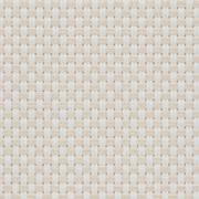 Tejidos Transparente EXTERNAL SCREEN CLASSIC Natté 4503 0220 Blanoc Lino